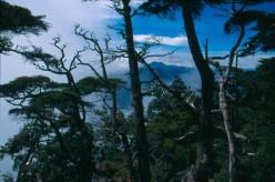 Shirane-san in distance from Nantai-san.