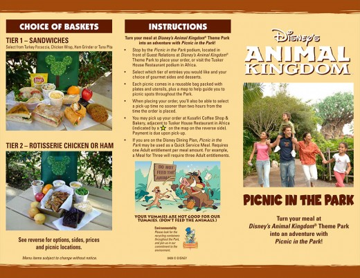 Animal kingdom - Picnic in the park