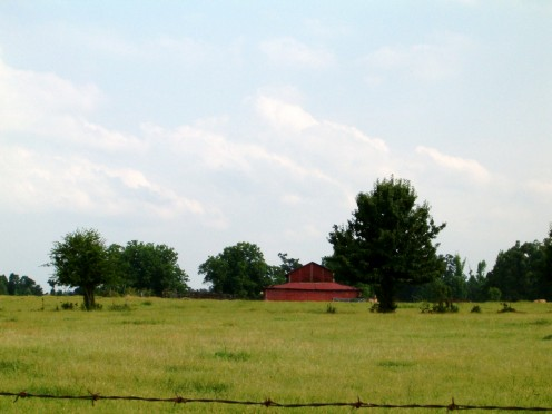 Off in the distance, I love to see an old red barn! Or a new one for that matter!