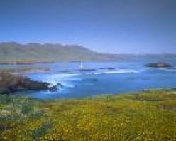 Santa Cruz Island from above