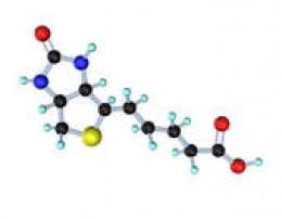 Vitamin B-7; the biotin molecule.