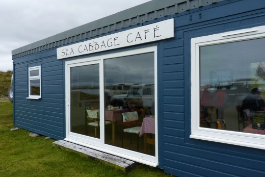 Sea Cabbage Cafe at the Bluff Cove Penguin Colony