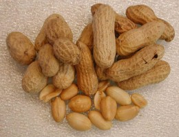 Peanuts are a great source of protein!