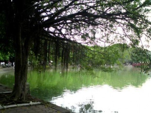 Taking a walk around this lake early in the morning can be a relaxing experience.