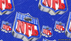 2010 NFL Season Preview and Week One Picks