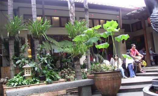 Rumah Mode garden http://blog.malaysia-asia.my