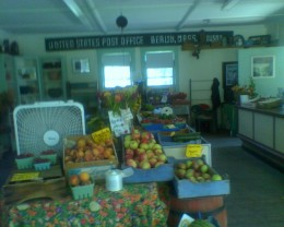 Bins of the fresh fruit and vegetables sold at Indian Head Farm