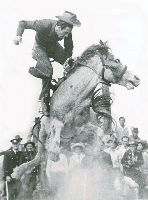 Alan Wood on the great Australian bucking mare, Curio. Photo taken shortly before Alan regained his seat and went on to make the required time.