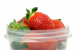 Food containers help to keep your food organized and fresh.
