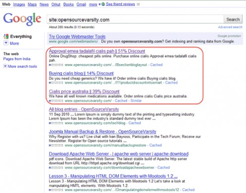 Diagram 1. Google SERP entries