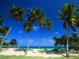 The Dominican Republic beach