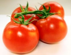 Tomatoes ready for juice