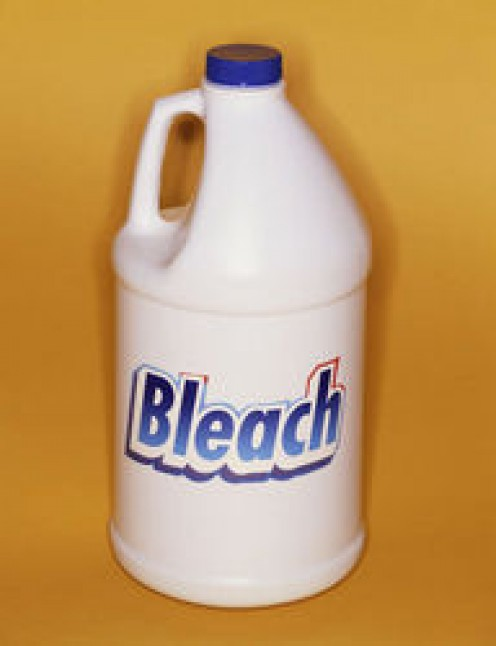 History of Bleach