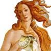 Menfis profile image