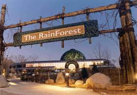 The RainForest at the Cleveland Metroparks Zoo