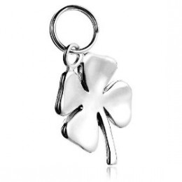 Buy Silver Charms Online