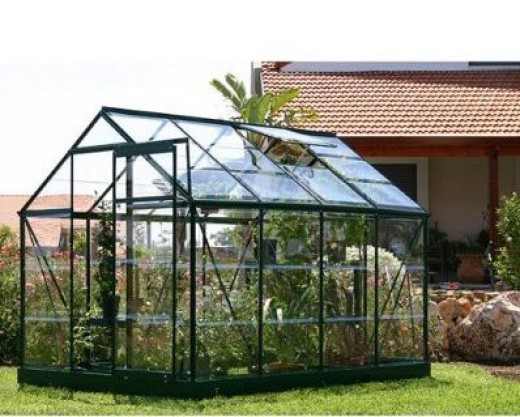Rion Greenline 6-by-8-Foot Backyard Hobby Greenhouse