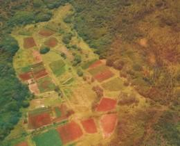 Farmland below
