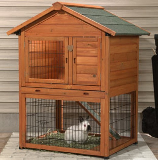 Roza february 2015 for Outdoor bunny hutch