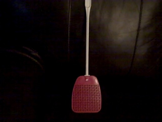 I keep my ... swatter close by at all times in my living area.