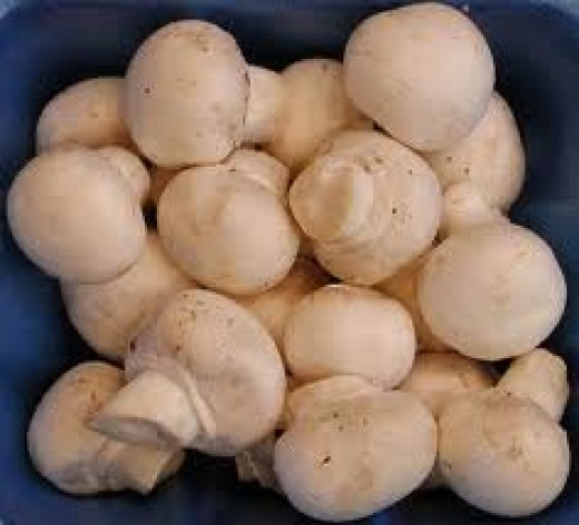 button mushrooms help with weight-loss.