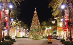 DESTIN COMMONS LAVISH OPEN AIR MALL with its monstrous christmas tree, which goes up every year following Thanksgiving and  does not come down until January 2nd.