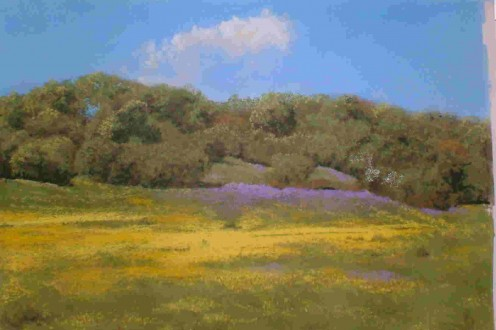 Buttercups and Bluebells - SOLD.   Unison Colour Pastels on Colourfix paper.