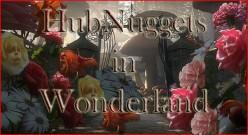 HubNuggets in Wonderland