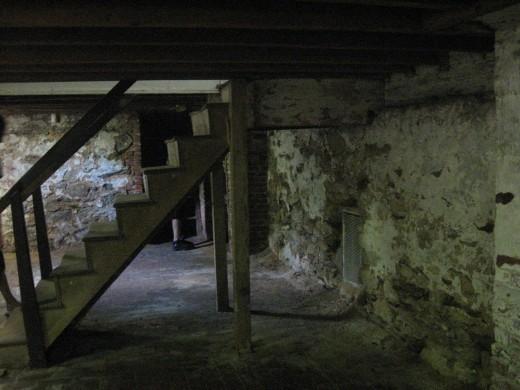 the cobwebbed cellar