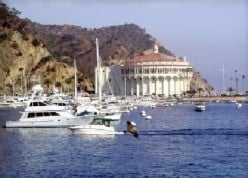 Fun things to do on Catalina Island