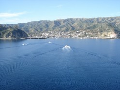 Catalina Island - Best Getaway Destination