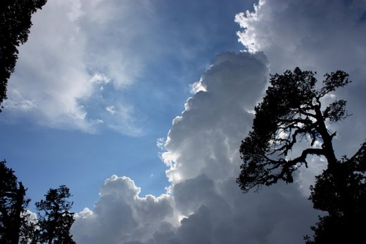 A look at the sky of Mcleodganj