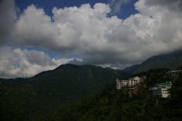 Trekking hills near Mcleodganj