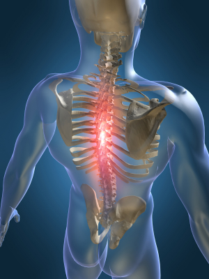 Chiropractic treats nervous issues in the spine.
