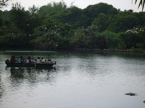 Boating @ Ranganthittu Bird Sanctuary