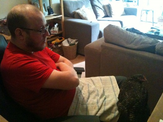 Hubby and Speckles watch a Jimi Hendrix documentary