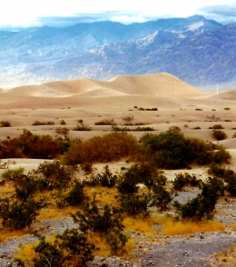 Death Valley is a photographer's delight!