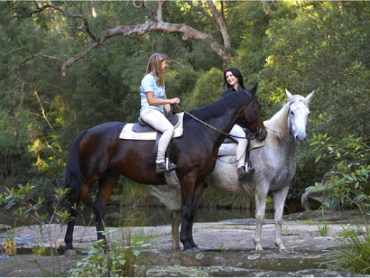 Horse riding: Spend time in a lesson or riding out in a hack or trek