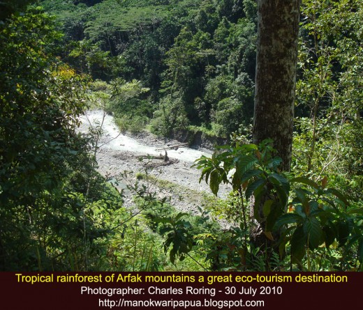 Arfak mountains is a great destination of travelers who want to experience the natural beauty of the tropical rainforest