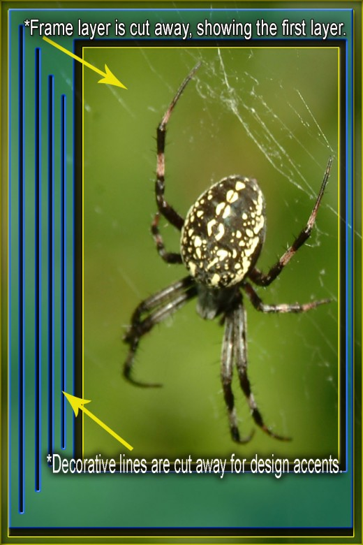 Frame layer is brought to front, and then cut away leaving the original non-modified shot of the spider.  The color overlay is also apparent on the frame layer and the 47% opacity allows some of the photo to show while making the frame stand out.