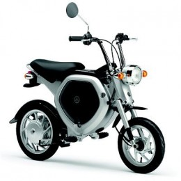 How about a Yamaha Electric Monkey Bike for great MPG?