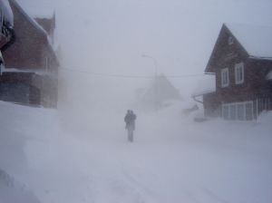 "* image of ""Winter"" courtesy of Jan Zabroda at StockXching"