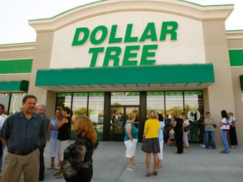 Dollar Tree, a chain dollar store