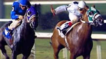 Thoroughbred Racing at the Breeders Cup