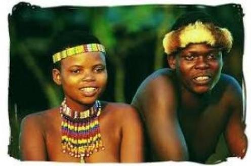 Nguni (Zulu's)