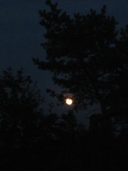 Full Moon Rising  Autumn 2010