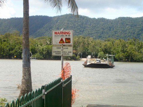 The Daintree ferry - start of an adventure