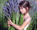 Lavender Essential Oil: Grades and Regions