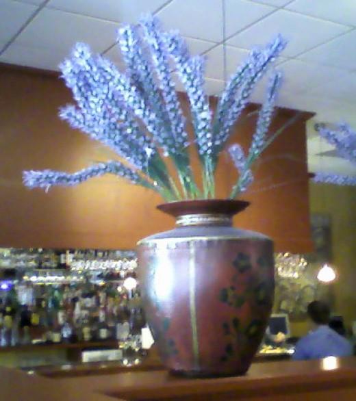 The namesake plant!