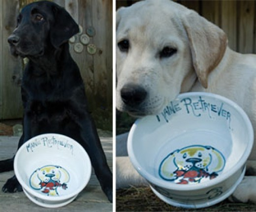 personalized pet/dog feeding bowl by Georgetown Pottery with black and white labs holding the artistic dishes
